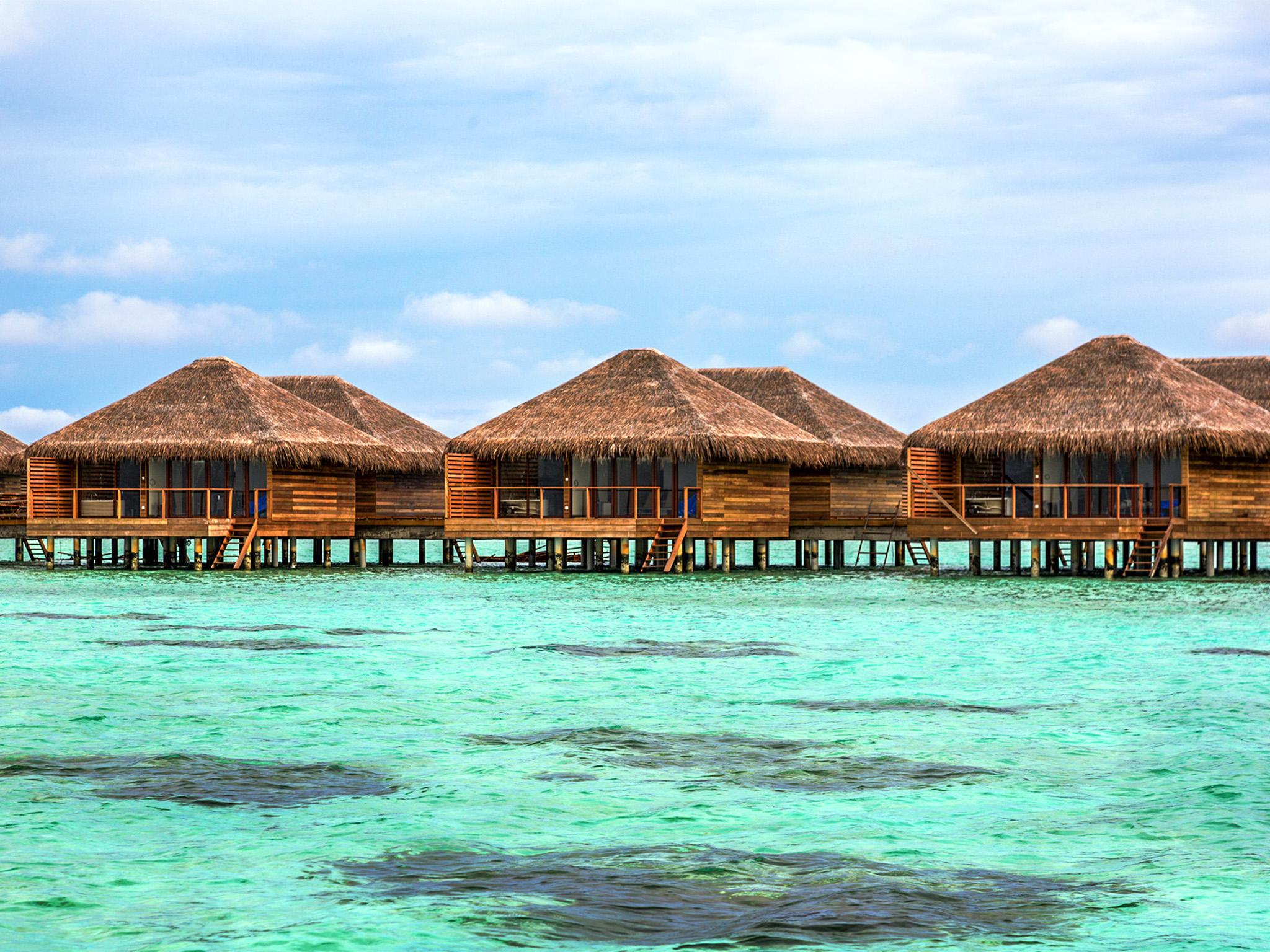 Id4u cocoon maldive for Mav arreda